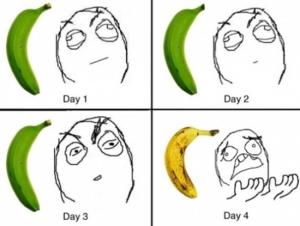 banana-in-quattro-giorni immaginidivertenti.org