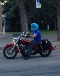 E' il miglior casco... immaginidivertenti.org
