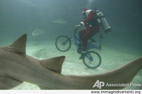 sotto-acqua-con-bicicletta