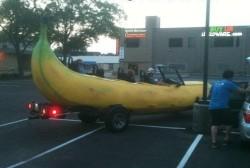 Non c'è tempo per spiegare, sali in banana! immaginidivertenti.org